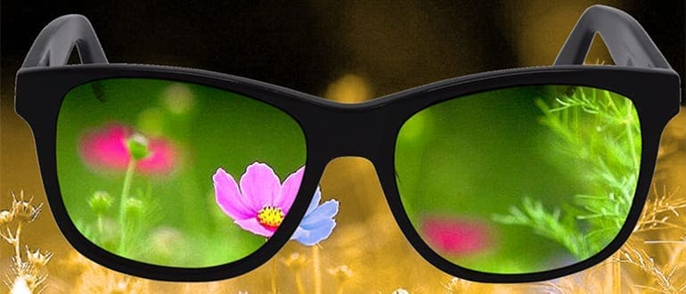 Очки для дальтоников — принцип действия, показания к применению